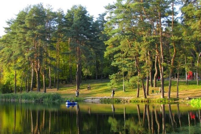 Мільйонне дерево висадили в Голосіївському парку