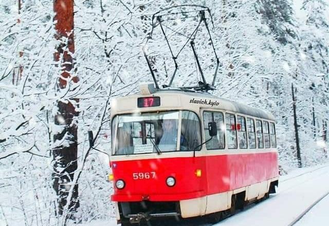 Казкова зима в Пущі-Водиці – неймовірні фото