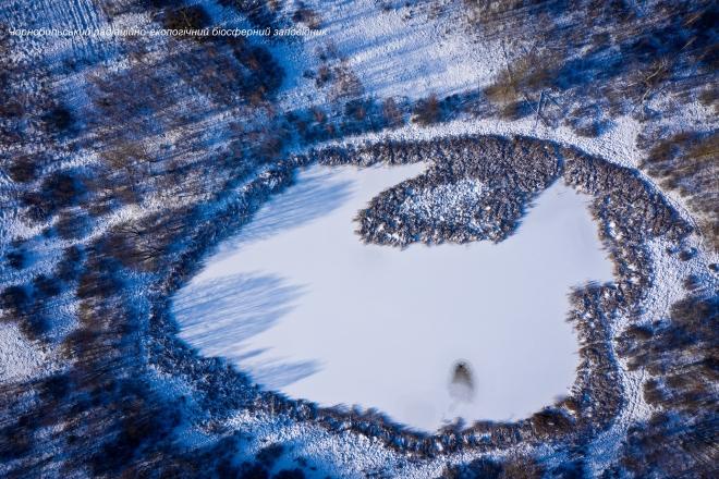 Зима в Чорнобильському заповіднику – неймовірні фото