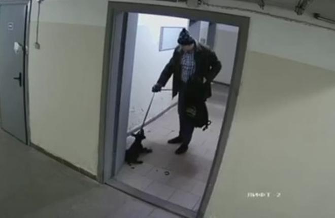У Києві чоловік побив ногами цуценя та викинув на мороз – це потрапило на відео (18+)
