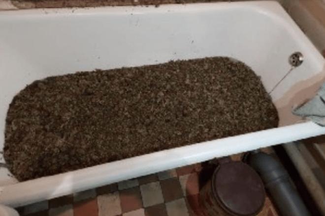 """Ціла ванна марихуани та два гранатомети – """"смачний улов"""" обласних поліцейських"""
