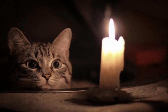 Куди звертатись, якщо зникло світло? Пам'ятка для мешканців Київщини