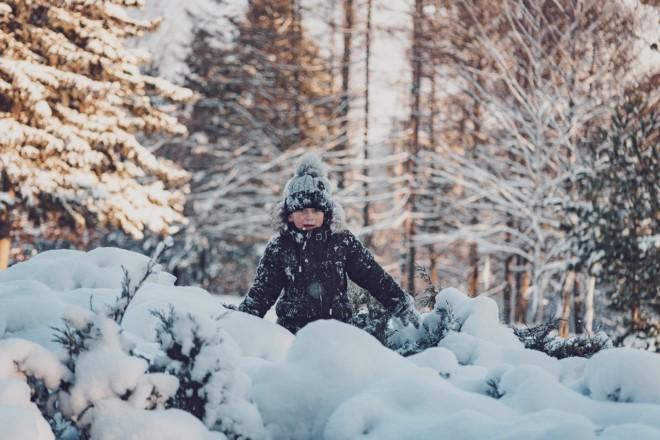 """Зима йому до лиця. Дендропарк """"Олександрія"""" вражає красою і кількістю любителів снігу"""