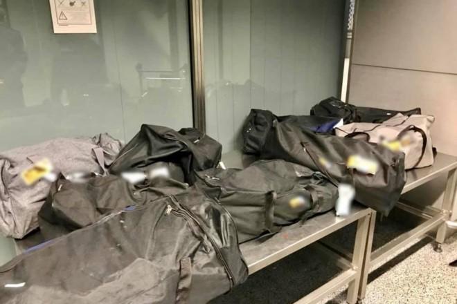 """150 кг сирого м'яса у 8 сумках. Таку здобич виявили у пасажира в аеропорту """"Бориспіль"""""""