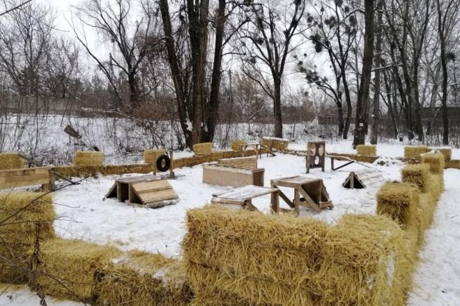 Як в Європі: у Дніпровському районі створили майданчик для вигулу собак