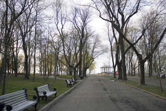 Київрада віддала в оренду ділянку разом із частиною Володимирської гірки. До чого тут Азаров