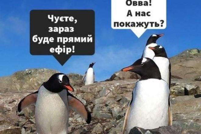 Українським полярникам можна поставити питання в прямому ефірі