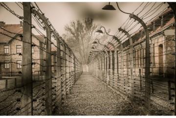 В'язні Сирецького концтабору: змушені порсатися у трупах, їсти пацюків та просити смерті