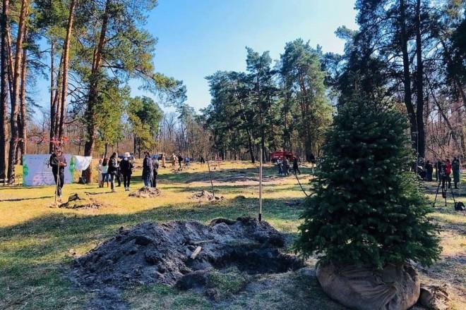 """""""Озеленення планети"""": в Пущі-Водиці висадили мільйонне дерево"""