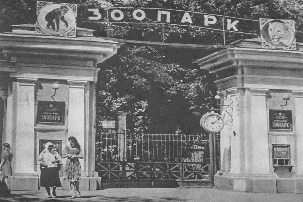 Київський зоопарк – слониха Мері – бегімот Гасн – зоопарк під час окупації Києва – окупація Києва