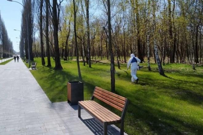 Прогулянки безпечніші: кліщів почали труїти в парках Деснянського району