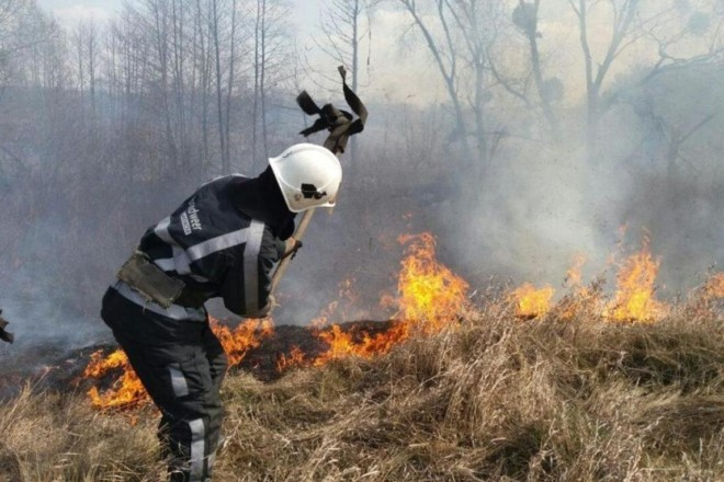 На Київщині палії трави ледь не спалили село (ВІДЕО)