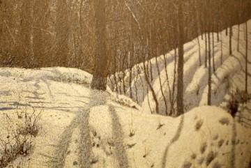 """""""Я пльонтаю, поки не оживе сам сніг і не стане таким, як я хочу"""". Де в столиці побачити картини легендарного Івана Марчука"""