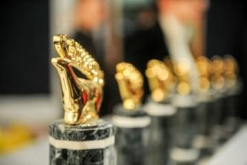 """Понад 200 фільмів та італійський кінематограф. Чим потішить глядачів ювілейний кінофестиваль """"Молодість"""""""