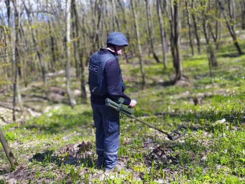 Село на бомбах. На Київщині в ліску рятувальники знайшли 90 снарядів