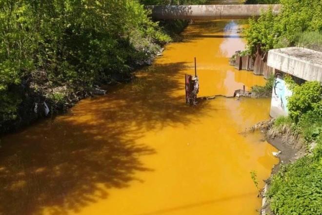 Отруйно-жовта Либідь: фахівці проведуть дослідження води в річці