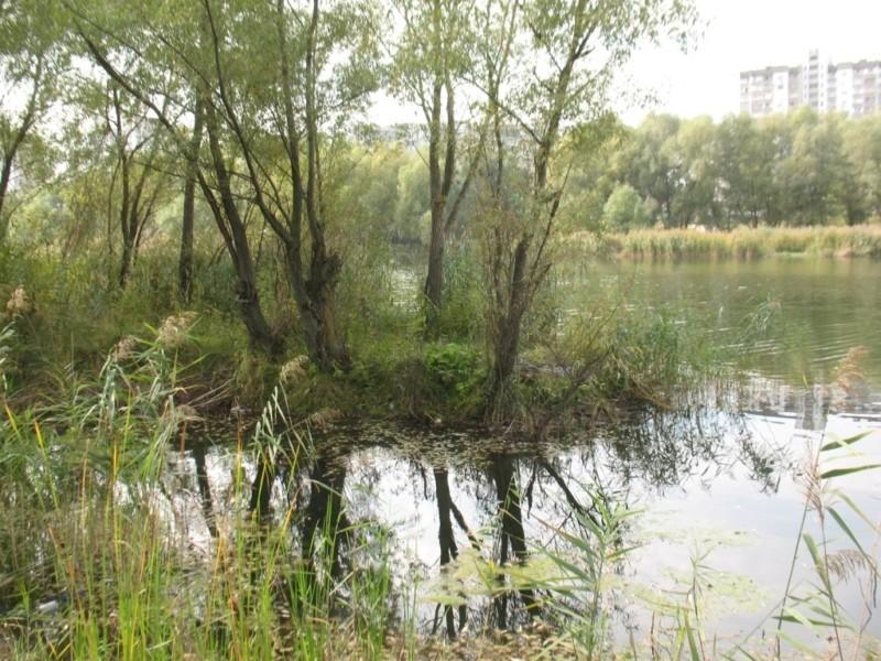 """Перипетії довкола """"Троєщинських лугів"""" – чи забудують останню зелену зону району"""
