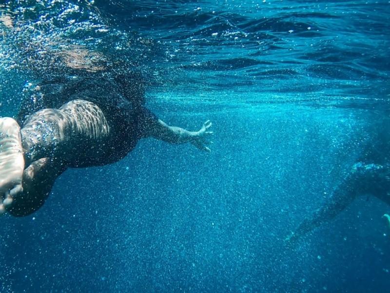 Водолази добу шукають сім'ю, яку віднесло на матраці в Київське море