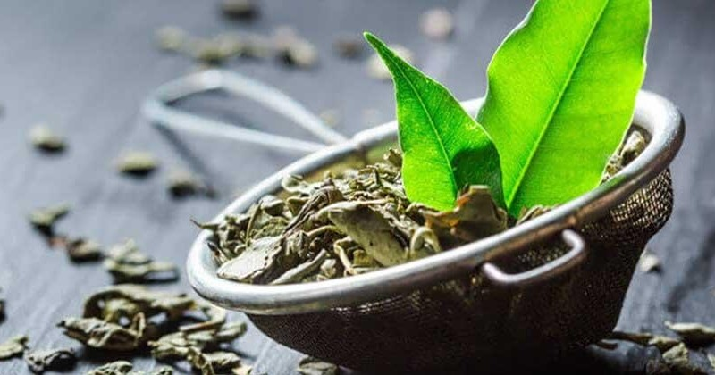 Карантин, 453. В зеленому чаї знайшли речовину, яка потенційно може лікувати COVID-19