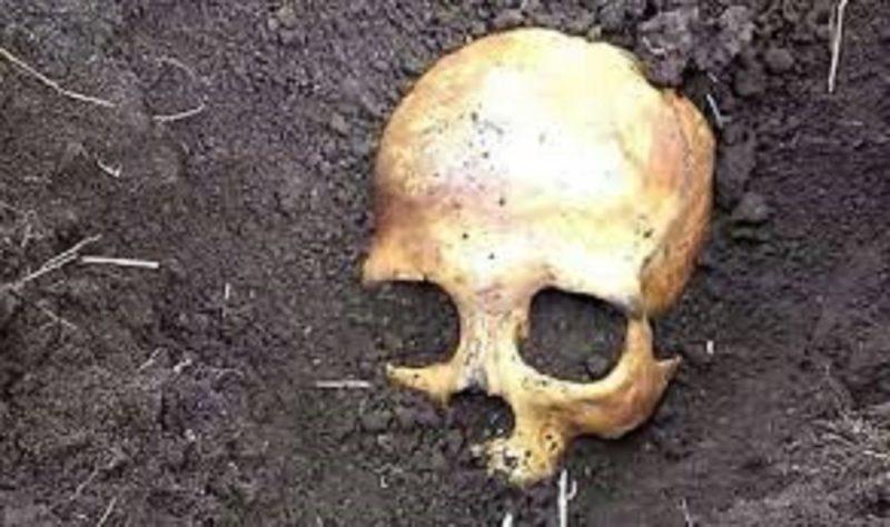 На Дорогожичах робітники випадково відкопали людські рештки