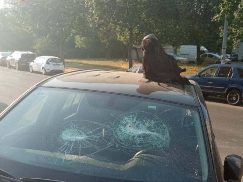 Жорстокий сюрприз для водія: голова корови на припаркованій автівці (ФОТО)