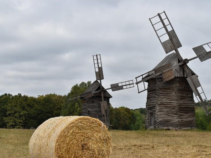 Відпочити та насолодитись мальовничими краєвидами. Киян запрошують на осінній ярмарок у Пирогово
