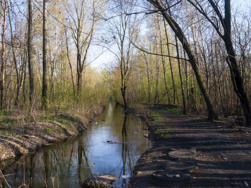 Вздовж річки на Дарниці створять заказник площею понад 100 га