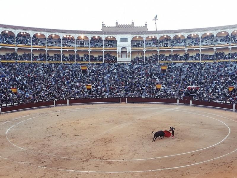 Місто монархів та кориди: український лоукостер літатиме до Мадриду