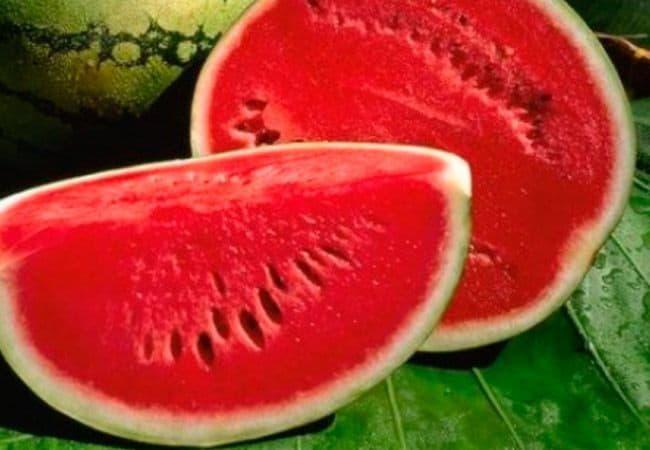 Арбузы заняли первое место в экспорте фруктов и ягод в страны ЕС