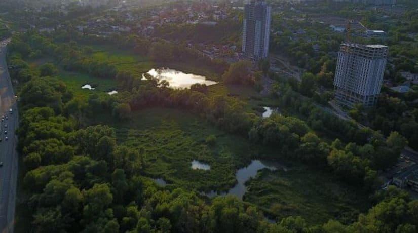 На берегах естественного русла Лыбеди в Голосеевском районе вырублены все деревья