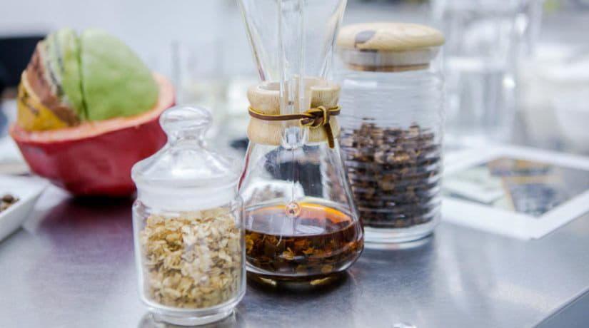 Кофейное зерно упало на благодатную почву