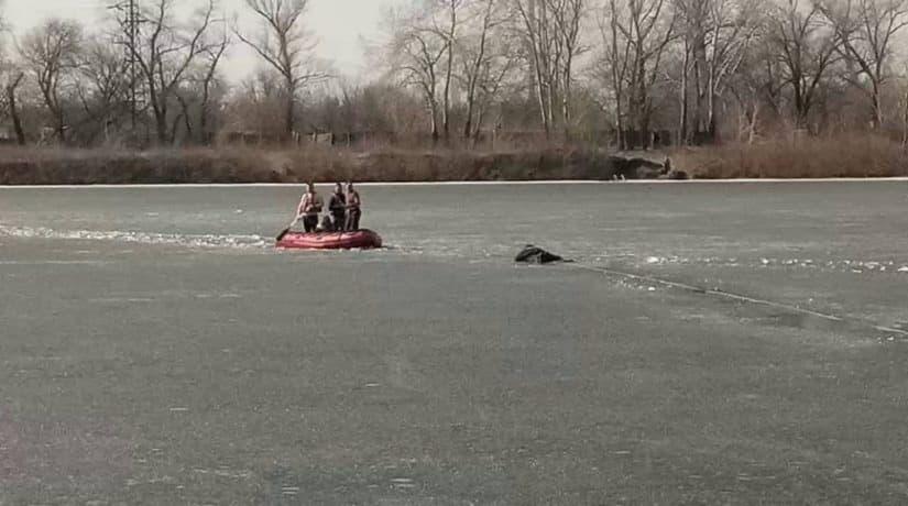В заливе Берковщина бойцы ГСЧС спасли рыбака, провалившегося под лед