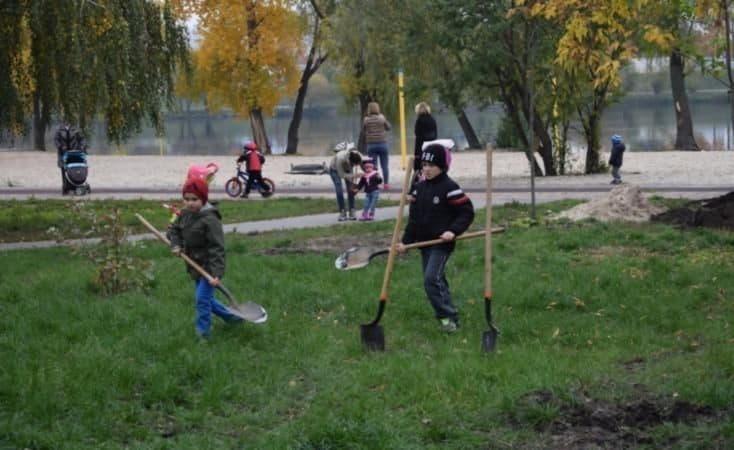 Толоки 24 квітня: де будуть прибирати зелені зони і висаджувати дерева