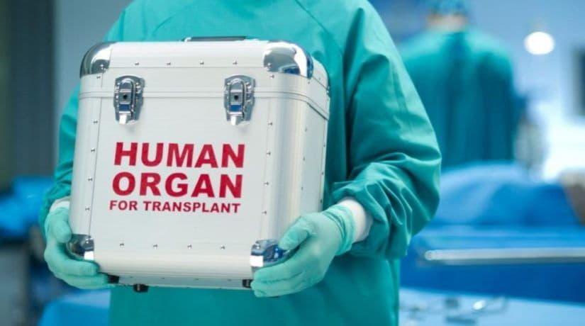 Серце, нирки та печінка. Київські і запорізькі хірурги провели чотири трансплантації від одного донора