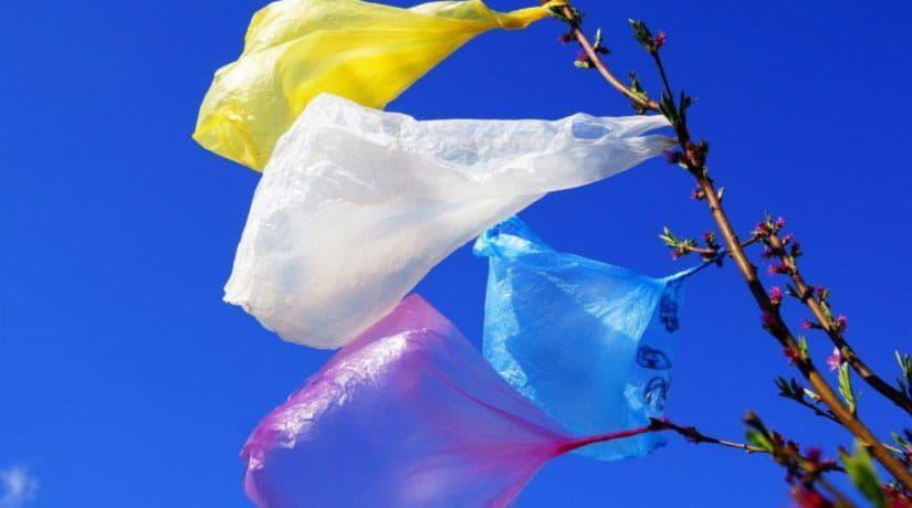 На Крещатике состоится акция «Пластиковый пакет – это не модно»