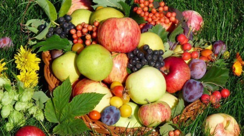 5 и 6 октября пройдут традиционные сельскохозяйственные ярмарки